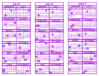 Purple 3 Year Calendar - 2015 - 2016 - 2017