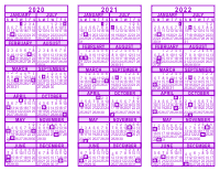 Purple 3 Year Calendar - 2020 - 2021 - 2022