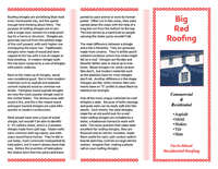 Red Brochure Template 2